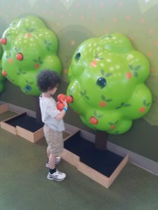 Food Play at Orlando Science Center